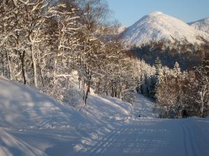 Norway now........