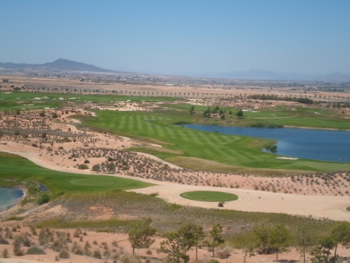 the fairways are looking good now.............
